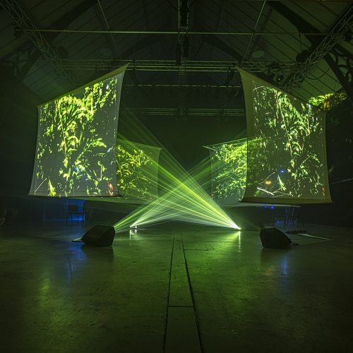Photo show a room with four projector screens displaying green-tinted abstract graphics as part of an art installation